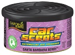 California Car Scents - LESNÍ OVOCE